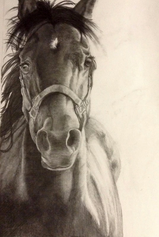 e621 ambiguous_gender equid equine horse mammal realistic solo traditional_media_(artwork)