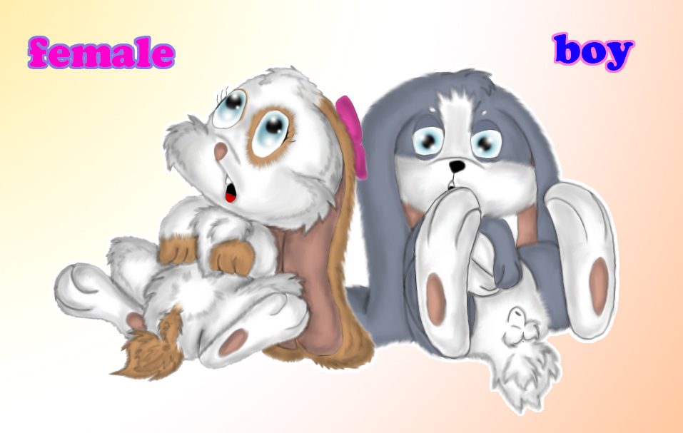 e621 animal_genitalia balls blue_eyes bow female fully_sheathed hare hase jamster lagomorph looking_at_viewer male mammal pawpads paws rabbit schnuffel schnuffelinchen sheath snuggelina snuggle_bunny unknown_artist