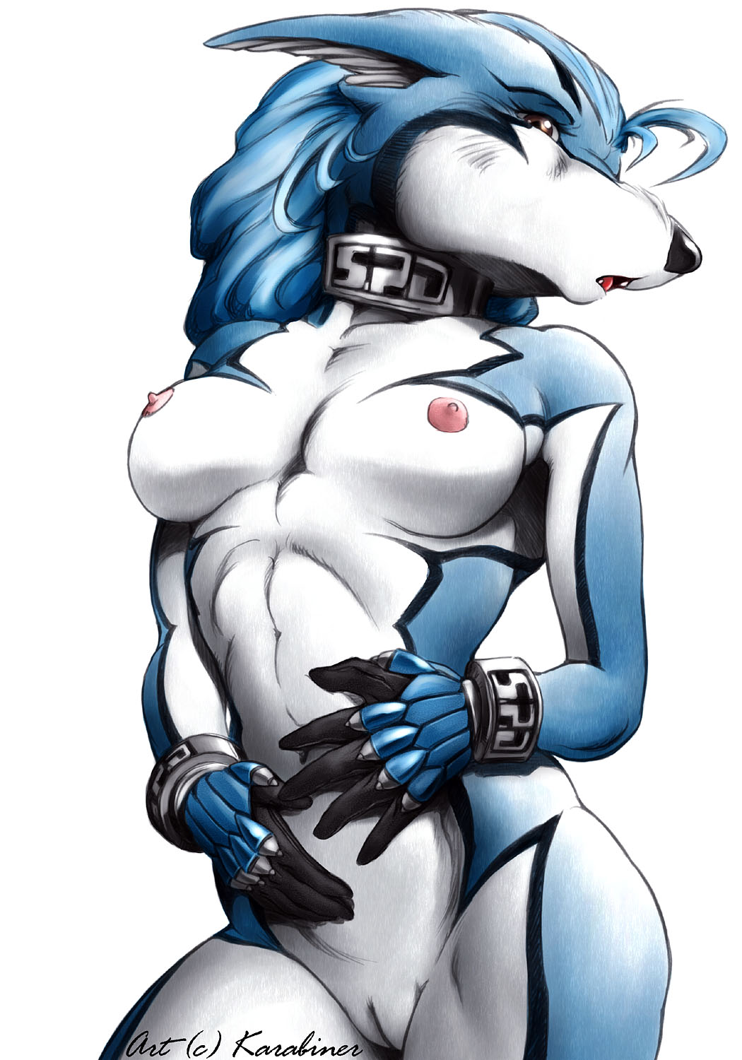 e621 anthro breasts clothing collar countershading crossgender digital_media_(artwork) doggy_kruger female gloves half-length_portrait karabiner mostly_nude nipples pose power_rangers pussy solo