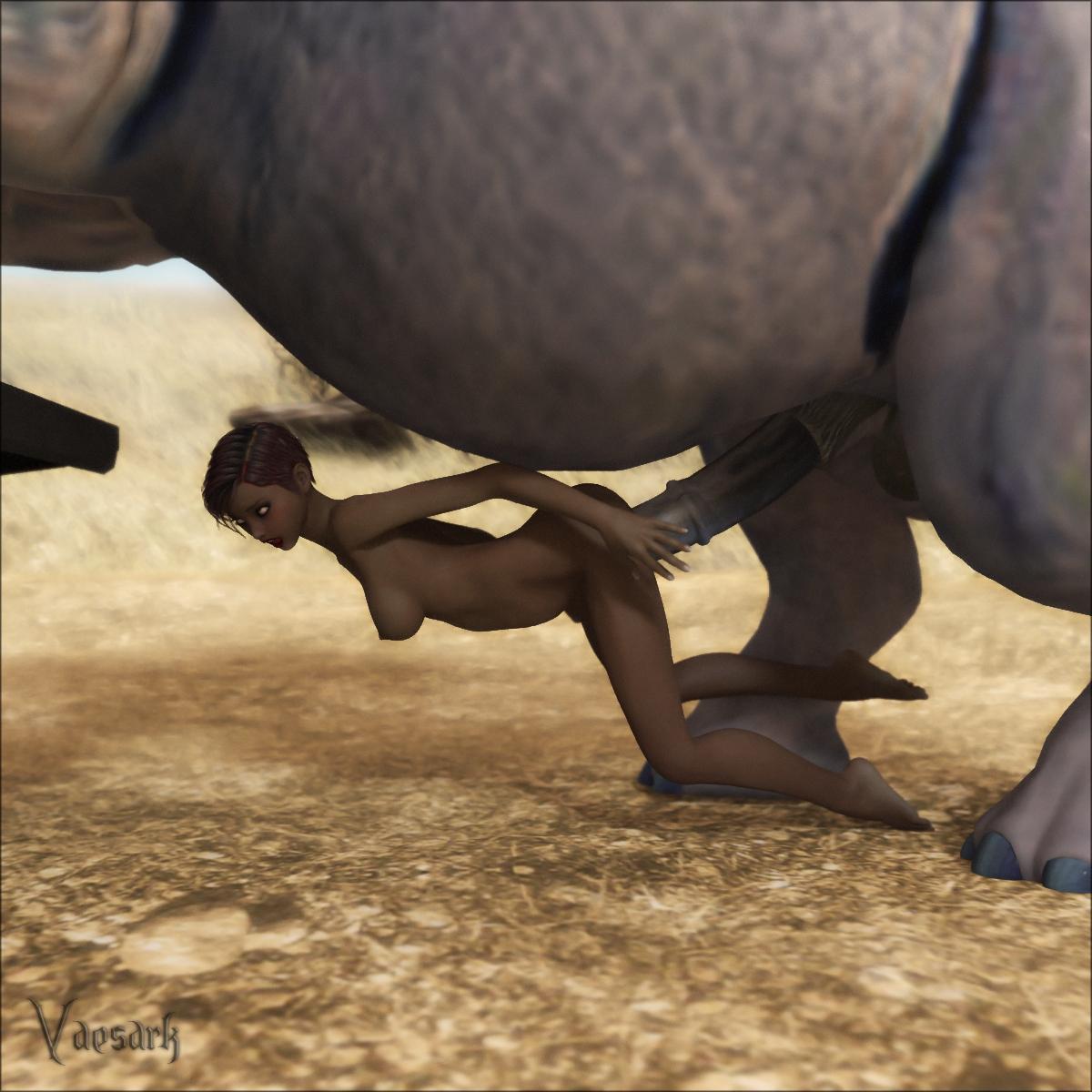Xxx video elephant