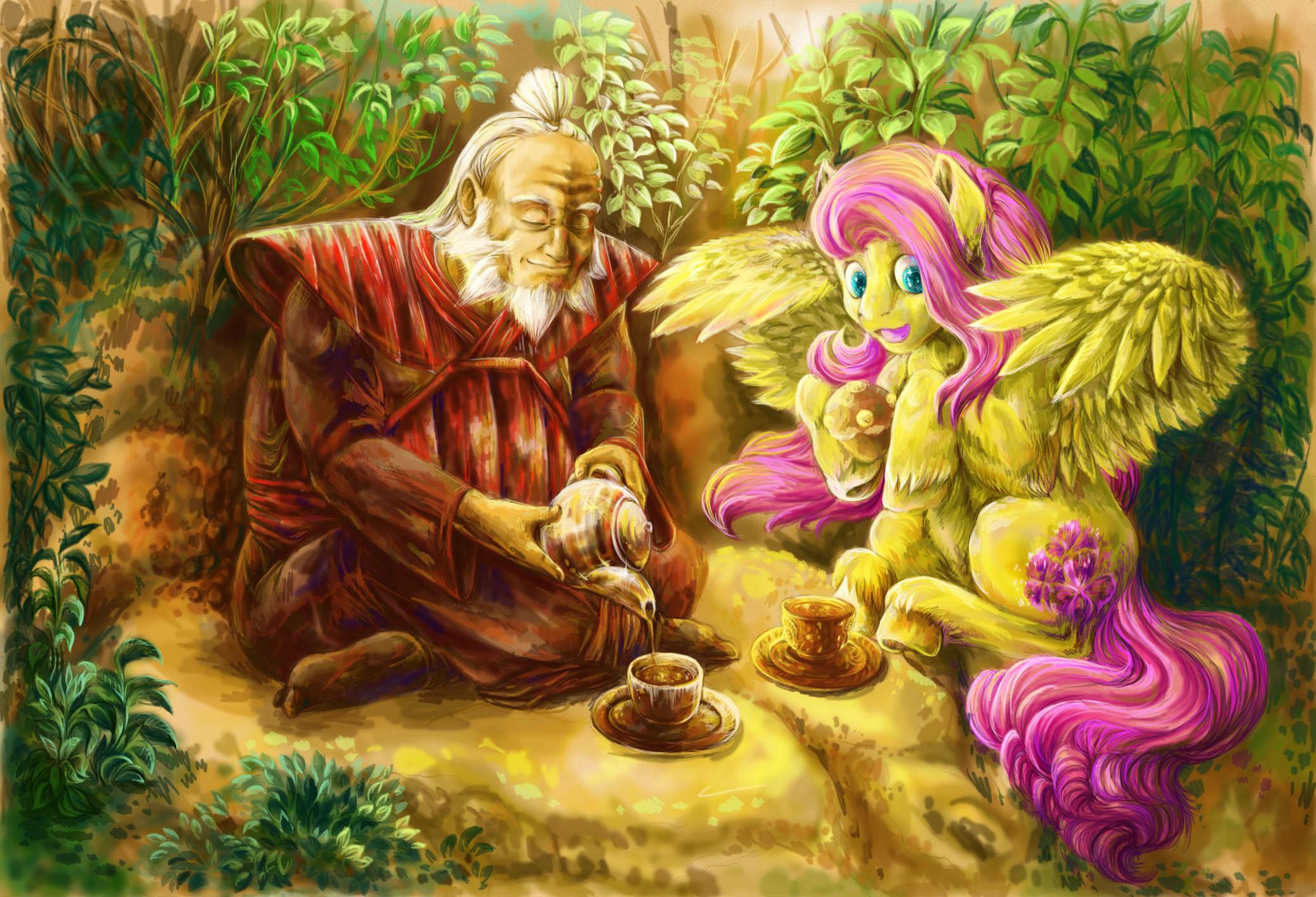 Friendship is magic fur hair hi res human iroh long hair male mammal