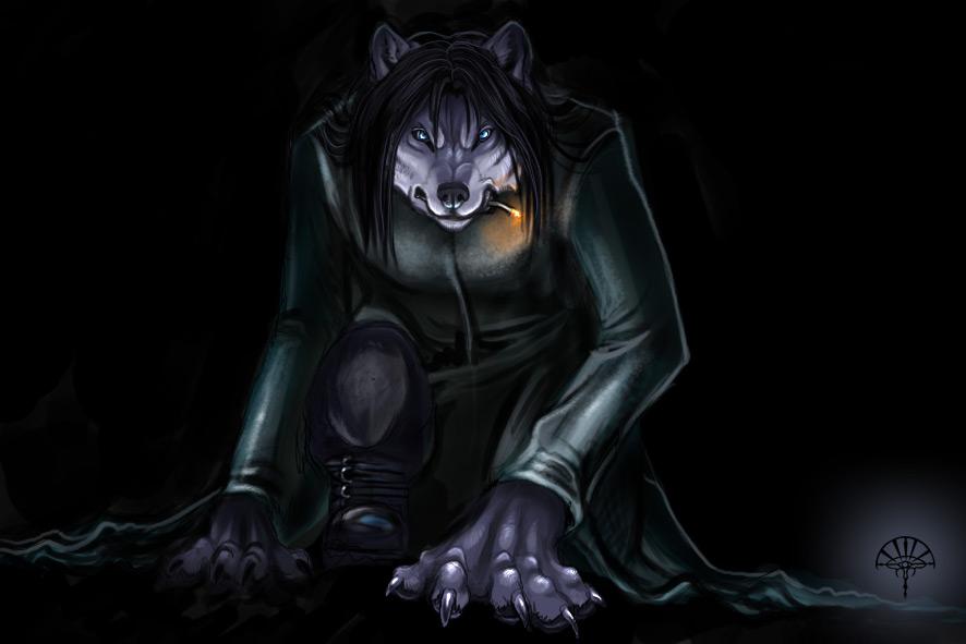 Black wolf furry - photo#16