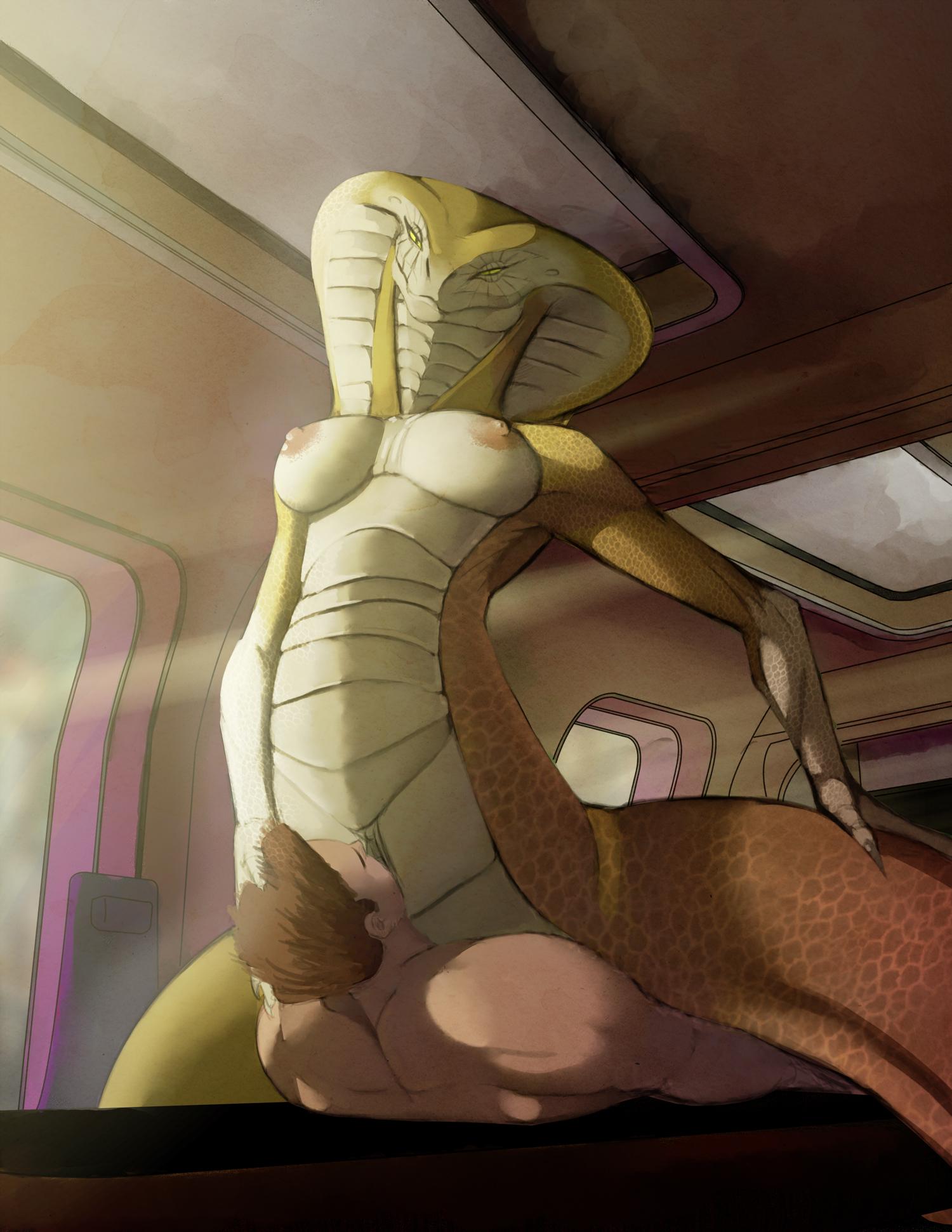 Snake and human porn