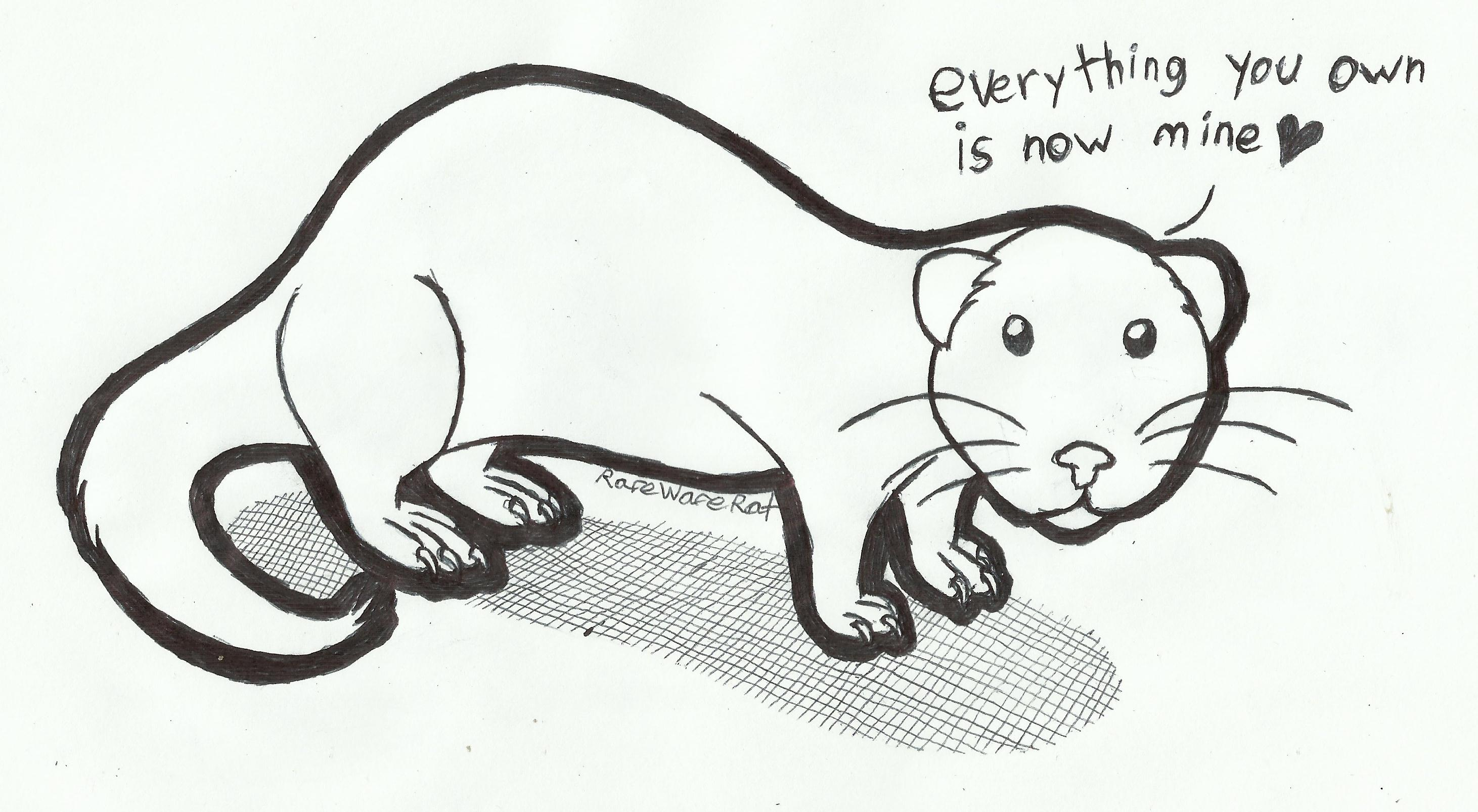 e621 :3 <3 ambiguous_gender black_and_white claws cute dialogue english_text feral ferret full-length_portrait hi_res line_art looking_at_viewer mammal marker_(artwork) mixed_media monochrome mustelid pen_(artwork) pet portrait quadruped rarewarerat round_ears side_view simple_background solo standing territorial text the_truth toe_claws traditional_media_(artwork) whiskers white_background white_claws