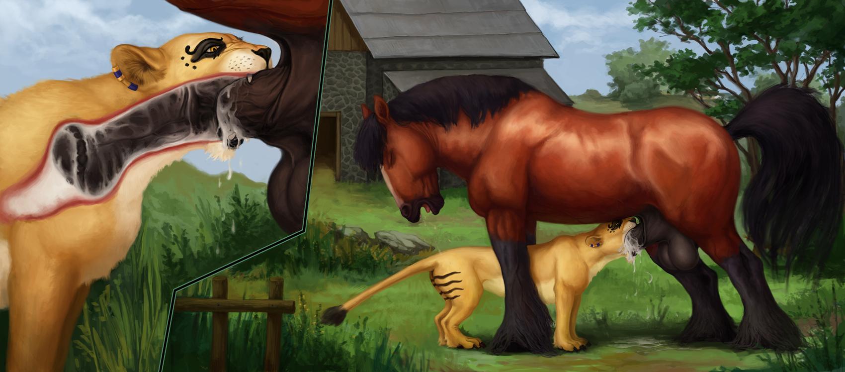сэкс конный