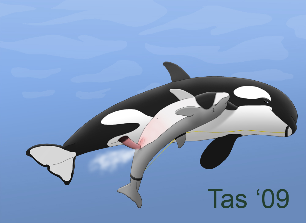 Killer whale cumshot