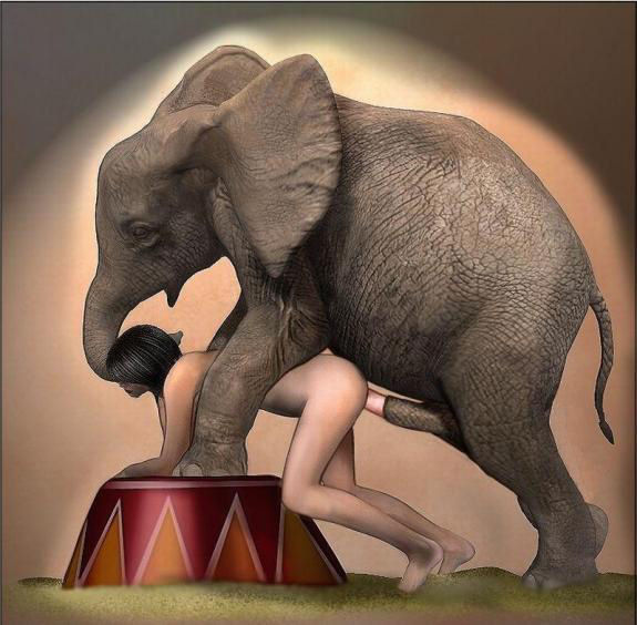 elephant-porn-sex-images