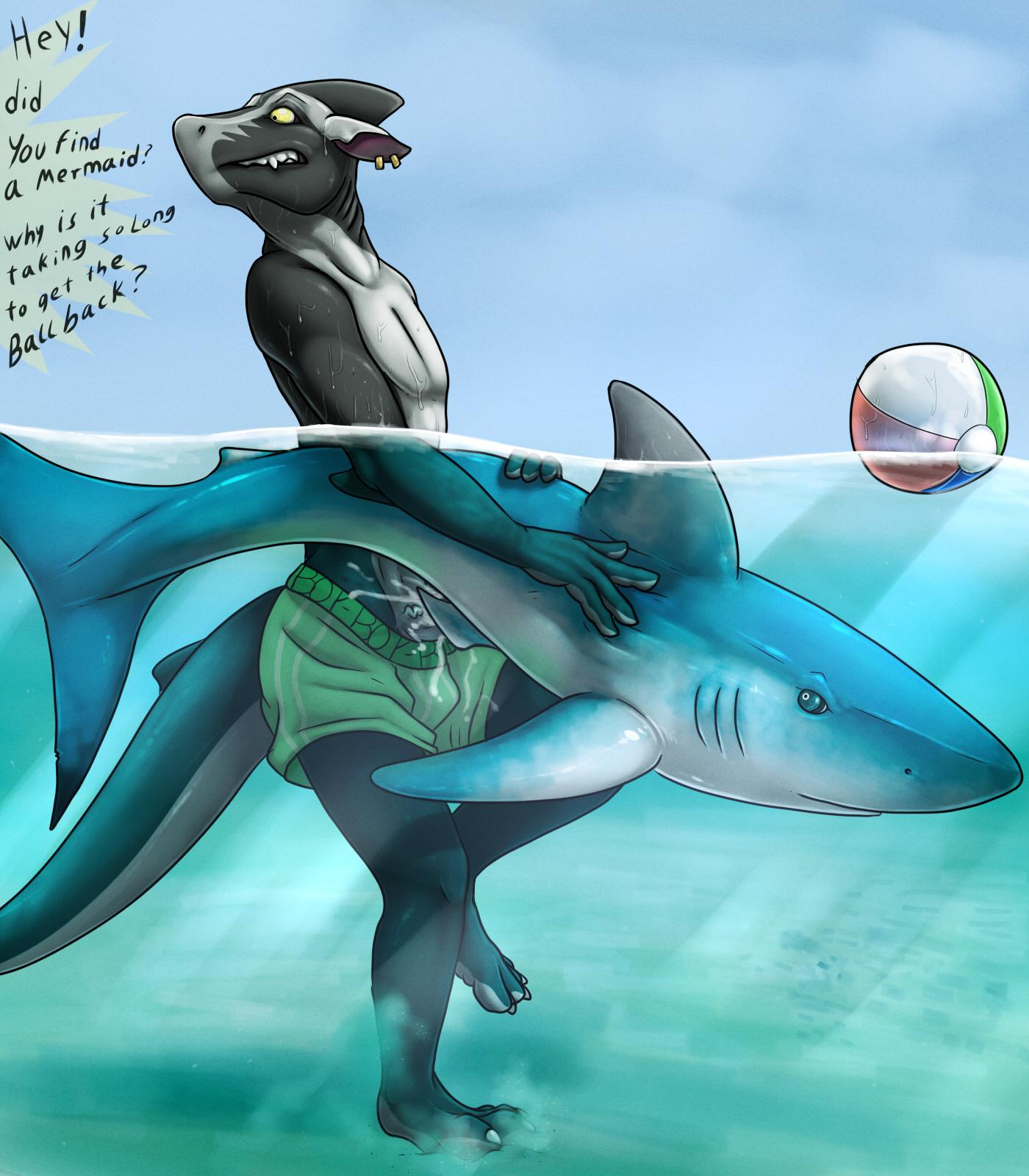 e621 shark