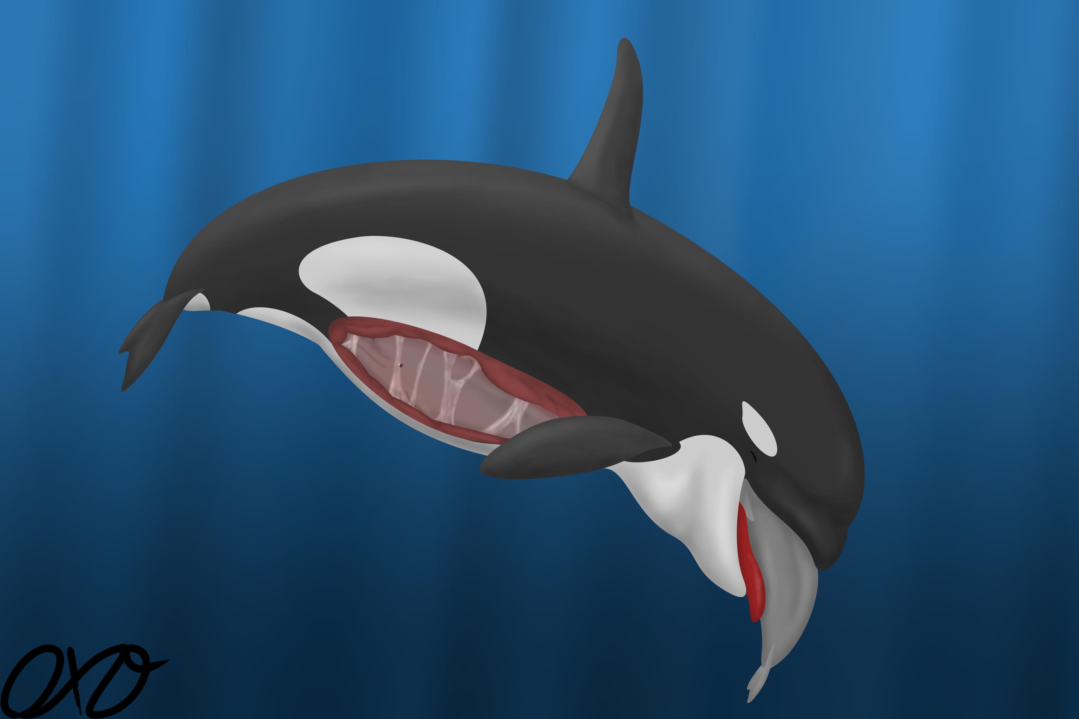 orca vore