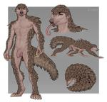 4_toes 5_fingers abs all_fours anthro balls barefoot beige_penis big_tail biped border brown_nipples brown_nose brown_scales brown_tail caraid claws detailed digital_media_(artwork) digitigrade eyebrows facial_hair feet feral feralized flaccid flat_colors front_view full-length_portrait goatee headshot_portrait humanoid_hands humanoid_penis long_claws long_tongue looking_at_viewer looking_away looking_back male mammal model_sheet multiple_images muscular muscular_male navel nipples no_sclera nude orange_eyes outside_border pangolin pecs penis pink_tongue portrait quadruped rear_view scales seductive serious sharp_claws side_view simple_background snout solo standing tan_balls tan_claws tan_skin toe_claws toes tongue tongue_out uncut watermark