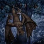 balls bat demo666 erection fruit_bat looking_at_viewer lucky13s male mammal mango night nude penis perspective pose precum solo wings  Rating: Explicit Score: 0 User: demodragon666 Date: February 07, 2016