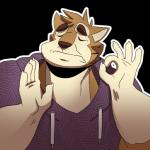 anthro baraking brown_fur canid canine clothed clothing fur gesture half-length_portrait hoodie humor just_right lol_comments male mammal meme ok_sign pacha_(the_emperor's_new_groove) portrait reaction_image simple_background solo wachi_(character) white_furRating: SafeScore: 45User: HahaVeryFunnyDate: July 20, 2016