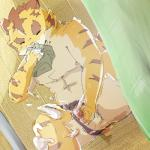anthro big_muscles clothing cum erection eyes_closed feline fur male mammal masturbation morenatsu muscles orgasm penis sniffing solo speedo swimsuit tent tiger torahiko_ooshima underwear underwear_aside undressed  Rating: Explicit Score: 2 User: Kod Date: June 24, 2015""
