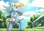 2015 absurd_res equine female feral friendship_is_magic hi_res lovelyneckbeard mammal my_little_pony pegasus rainbow_dash_(mlp) solo tennis wings   Rating: Safe  Score: 16  User: Robinebra  Date: May 15, 2015