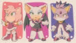 amy_rose anthro aoki6311 bat blaze_the_cat cat chibi cleavage clothed clothing feline female green_eyes hedgehog looking_at_viewer mammal rouge_the_bat solo sonic_(series) yellow_eyes   Rating: Safe  Score: 5  User: Juni221  Date: July 29, 2014