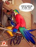 ? abs ambiguous_species anthro anthro_on_anthro avian balls barefoot beak big_dom_small_sub biped bird blue-and-yellow_macaw blush bulge butt captain_nikko claws clothed clothed_sex clothing cum cum_in_mouth cum_inside cum_on_face cum_on_penis cum_string dutch dutch_text english_text erection feathers footwear gangbang green_eyes group group_sex inside looking_away looking_back macaw male male/male manly masturbation open_mouth orgasm outside parrot patreon penis pubes question sex sharp_claws shirt shoes shorts sitting size_difference smile solo_focus standing standing_over tail_feathers text thick_penis threesome toe_claws tongue uncut unprofessional_behaviorRating: ExplicitScore: 15User: ThisIsGospelDate: July 25, 2017