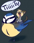 ambiguous_gender anthro avian bell_collar bird blue_feathers blue_tit briskby collar derp_eyes domestic_cat duo english_text feathers felid feline felis humor innuendo mammal pun riding siamese simple_background straddling text tit_(bird) yelling yellow_feathers