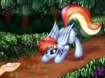 2016 ass_up cutie_mark disembodied_hand elzzombie equine female forest friendship_is_magic hair mammal multicolored_hair my_little_pony pegasus purple_eyes rainbow_dash_(mlp) rainbow_hair sugar_cube tree wingsRating: SafeScore: 1User: 2DUKDate: January 21, 2018