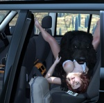 3d bestiality big_breasts breasts canine canis3 car dog female feral forced human interspecies male mammal miriam rape vehicle  Rating: Explicit Score: 17 User: Canis3 Date: May 30, 2015