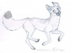 2014 canine feral fox idess male mammal sketch solo   Rating: Safe  Score: 2  User: tony311  Date: April 23, 2014