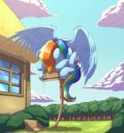 2015 bird_feeder eating equine female friendship_is_magic hair mammal multicolored_hair my_little_pony otakuap pegasus rainbow_dash_(mlp) rainbow_hair solo wings  Rating: Safe Score: 16 User: 2DUK Date: September 29, 2015