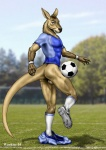 anthro athletic backsack ball balls bottomless butt claws cleats clothed clothing cloud detailed_background kangaroo legwear looking_at_viewer male mammal marsupial outside pants pants_down partially_clothed shorts sky soccer soccer_ball socks solo sport standing undressing wooky