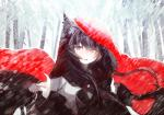animal_ears black_and_white_and_red blush brooch brown_hair canine cloak clothes_grab digital_media_(artwork) female fingernails hair half-length_portrait hood imaizumi_kagerou jewelry long_sleeves mammal one_eye_closed outside parted_lips red_eyes snow snowing snowstorm solo suzki00 text touhou tree twitter_username were werewolf wide_sleeves wind wolf_ears wolf_tail   Rating: Safe  Score: 3  User: Hibachi  Date: December 11, 2014