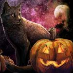 cat feline feral halloween holidays mammal moon night outside pumpkin sky stars tatchit tree   Rating: Safe  Score: 0  User: NaughtyPenguin  Date: April 24, 2014
