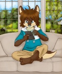 3_toes barefoot blue_eyes brown_fur brown_hair canine cute fur hair harakoa hoodie inside looking_down male morenatsu nintendo nintendo_ds sad shun sofa solo video_games wolf   Rating: Safe  Score: 11  User: Hardstyle_Chris  Date: July 27, 2013