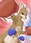 action_pose anthro boxing boxing_gloves child cub duo female kangaroo looking_at_viewer mammal manmosu_marimo marsupial mother parent pouch punch roger_jr roger_mama son sport tekken young  Rating: Safe Score: 21 User: queue Date: September 25, 2011