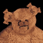3_heads ambiguous_gender animated bear cyriak digital_media_(artwork) fractal infinity loop low_res mammal multi_head solo teddy_bear what what_has_science_done