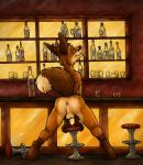 alcohol anthro anus backsack balls bar beverage black_claws black_lips brown_fur brown_nose butt canine claws digitigrade fluffy_tail food fox fur handpaw hindpaw inside leaning leaning_forward long_mouth looking_at_viewer looking_back lust male mammal markings no_sclera nude orange_eyes orange_fur pawpads paws pose public raised_tail red_fox secretden shot_glass snout socks_(marking) solo spread_legs spreading stool white_fur  Rating: Explicit Score: 17 User: Pwnerer Date: September 27, 2015