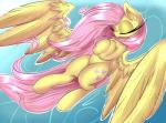 2015 absurd_res equine female feral fluttershy_(mlp) friendship_is_magic hi_res madacon mammal my_little_pony pegasus solo wings  Rating: Safe Score: 10 User: Robinebra Date: July 31, 2015