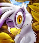 2014 avian brown_feathers female friendship_is_magic gilda_(mlp) gryphon looking_at_viewer my_little_pony one_eye_closed solo thedoggygal white_feathers yellow_eyes   Rating: Safe  Score: 4  User: DeltaFlame  Date: February 26, 2015