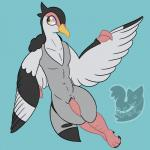 animal_genitalia animal_penis anthro anthrofied avian beak bird claws erection feathered_wings feathers flying fur genital_slit grey_fur looking_back male navel nintendo nude outside penis pokémon posexe simple_background sky slit smile solo tapering_penis toe_claws tranquill video_games watermark white_fur wings yellow_eyes