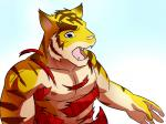 anthro biceps big_muscles blue_eyes clothing fangs feline fur male mammal morenatsu muscular muscular_male nipples open_mouth pecs pink_nose shirt simple_background solo stripes teeth tiger tongue torahiko_(morenatsu) torn_clothing unknown_artist  Rating: Safe Score: 0 User: Kod Date: June 25, 2015