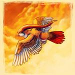 ambiguous_gender avian beak bird cloud cloudscape feathers feral flying nintendo outside pidgeot pokémon sky solo spacesmilodon talons video_games warm_colors wings   Rating: Safe  Score: 2  User: UNBERIEVABRE!  Date: July 08, 2014