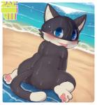 anus beach black_fur blue_eyes blush butt cat feline fur looking_at_viewer male mammal morgana_(persona) nude on_towel pawpads perineum pink_pawpads sea seaside semi-anthro skinny_dipping solo tongue tongue_out towel water wet white_fur zackary911Rating: ExplicitScore: 51User: AurassDate: July 29, 2018