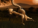all_fours amber_eyes anthro ass_up breasts cheetah feline female fur hattonslayden kota_(hattonslayden) looking_at_viewer mammal nude outside raised_tail solo spots sunset whiskers yellow_fur  Rating: Questionable Score: 41 User: Sharp_Coyote Date: October 12, 2015