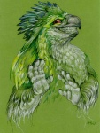 anthro avian beak bird cara_mitten feathers green_feathers green_theme grin male nah_i'm_good no_thanks parrot reaction_image red_eyes simple_background smile solo teeth
