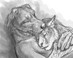 2014 anthro canine claws dog duo eyes_closed feline female greyscale hug johannes_cuthbert lynx male mammal monochrome rukis shivah sketch   Rating: Safe  Score: 5  User: TheGreatWolfgang  Date: October 14, 2014