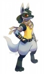 anthro brooch canine digital_media_(artwork) haychel jackal lucario male mammal mystery_dungeon nintendo pokémon pose red_eyes scarf smile solo standing video_games   Rating: Safe  Score: 12  User: Toothless-chan  Date: December 19, 2013