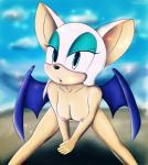 2014 absurd_res anthro bat female hi_res howl_echoes mammal rouge_the_bat sega sonic_(series) wings   Rating: Explicit  Score: 1  User: Howl_Echoes  Date: March 08, 2014
