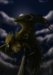 ambiguous_gender avian bird cloud electricity feathered_wings feathers green_eyes legendary_pokémon night nintendo outside pokémon sky solo star starry_sky unknown_artist utility_pole video_games wings zapdos
