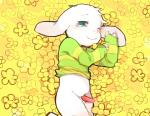 4_fingers anthro asriel_dreemurr big_ears blue_eyes blush boss_monster caprine clothing cub erection flower fur goat lying male mammal monster penis pinknuss plant shota solo undertale video_games white_fur young  Rating: Explicit Score: 11 User: slyroon Date: February 01, 2016