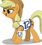 applejack_(mlp) blonde_hair clothed clothing cowboy_hat cutie_mark earth_pony equine female feral friendship_is_magic green_eyes hair hat horse indianapolis_colts leg_warmers legwear mammal my_little_pony nfl pony shirt simple_background solo varemia  Rating: Safe Score: 6 User: PrincessOfTheNight Date: February 02, 2015
