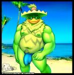 anthro avian beach bird bulge clothed clothing elfein hat hi_res looking_at_viewer ludicolo male musclegut nintendo nipples obese overweight penis_outline pokémon seaside skimpy solo speedo standing swimsuit topless video_games wet