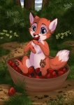 2013 ambiguous_gender canine chest_tuft cub cute feral food forest fox outside rukifox solo strawberry tree tuft young   Rating: Safe  Score: 18  User: tony311  Date: August 29, 2013