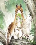 anthro avian bird black_eyes breasts female harpy leaf looking_at_viewer monster monster_girl necklace owl solo unknown_artist wings  Rating: Safe Score: 16 User: Juni221 Date: July 06, 2015