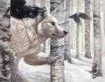 anthro avian beak birds black_body black_nose blotch canine claws feathers forest fur grey_fur male nude pose raven realistic snow snowing solo standing tree white_theme wolf yellow_eyes   Rating: Safe  Score: 30  User: Cow  Date: October 09, 2013